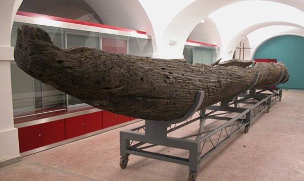 Моноксил из корита Дунава, Музеј града Новог Сада