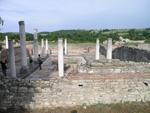 Српско археолошко друштво, Felix Romuliana